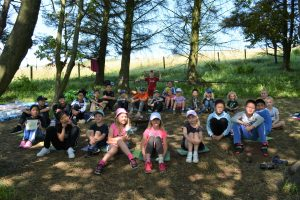 STEAM Forest School
